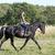 equitación · nina · negro · semental · naturaleza - foto stock © cynoclub