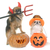 halloween · tök · kutya · stúdió · ördög · ünneplés · díszállat - stock fotó © cynoclub
