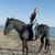 lovaglás · nő · csődör · fehér · képzés · iskola - stock fotó © cynoclub