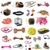 pet accessories stock photo © cynoclub