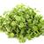 orvosi · természet · növény · gyógynövény · vad · növényvilág - stock fotó © cynoclub