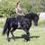 paardrijden · meisje · hengst · opleiding · zand · zwarte - stockfoto © cynoclub