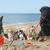 lopen · strand · bruin · najaar · hond · zee - stockfoto © cynoclub