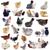 groep · kip · vogel · boerderij · eten · witte - stockfoto © cynoclub