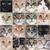 メイン州 · 猫 · グループ · 白 · 犬 · 猫 - ストックフォト © cynoclub