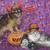 halloween pumpkin maine coon cat and chihuahua stock photo © cynoclub