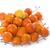 limon · meyve · yalıtılmış · beyaz · turuncu - stok fotoğraf © cynoclub