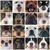 köpek · yavrusu · avustralya · çoban · köpek · genç · stüdyo - stok fotoğraf © cynoclub