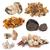 group of mushrooms stock photo © cynoclub
