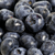 sweet details of blueberry stock photo © cypher0x