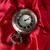 ポケット · グレー · クロック · 赤 · シルク · テクスチャ - ストックフォト © cypher0x
