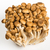 bunch of shimeji mushrooms on white stock photo © cypher0x