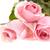 ピンク · 水滴 · 孤立した · 白 · 春 · 愛 - ストックフォト © d13