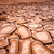 cracked ground in valle de la muerte desert san pedro de atacam stock photo © daboost