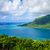 острове · французский · Полинезия · дерево · лес - Сток-фото © daboost