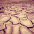 secas · rachado · terra · verde · planta · crescente - foto stock © daboost