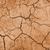 száraz · terep · barna · föld · természetes · mezőgazdasági - stock fotó © daboost