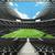 amerikaanse · voetbal · fans · veld · man · paar - stockfoto © danilo_vuletic