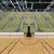 gyönyörű · sportok · aréna · kosárlabda · zöld · vip - stock fotó © danilo_vuletic