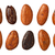 Cocoa Beans with a clipping path stock photo © danny_smythe