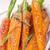 cenouras · bandeja · comida · bebê · vidro - foto stock © dar1930