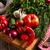 野菜 · タブレット · 赤 · 市場 · サラダ · 工場 - ストックフォト © Dar1930