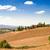 út · Toszkána · Olaszország · vidék · zárt · égbolt - stock fotó © dar1930