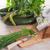 切り · チャイブ · ボウル · 緑 · 皿 · ハーブ - ストックフォト © dar1930