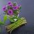 frescos · verde · espárragos · cinta · rústico - foto stock © dar1930