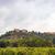 yol · Toskana · İtalya · ülke · yakın · gökyüzü - stok fotoğraf © dar1930