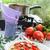 pasta · gekookt · geserveerd · saus · wijn - stockfoto © dar1930