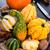 пугало · фермы · области · осень · праздник - Сток-фото © dar1930