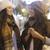 две · женщины · друзей · Постоянный · улице · городского - Сток-фото © dash