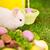 pequeno · coelhinho · da · páscoa · grama · verde · páscoa · céu · bebê - foto stock © dashapetrenko