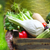 woman wearing gloves with fresh vegetables in the box in her han stock photo © dashapetrenko
