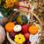 autumn still life with different pumpkins stock photo © dashapetrenko