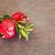 half · granaatappel · vruchten · Blauw · vers · Rood - stockfoto © dashapetrenko