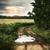 drogowego · żółty · słonecznika · dziedzinie · niebo - zdjęcia stock © dashapetrenko