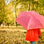 meisje · Rood · paraplu · lopen · park · vallen - stockfoto © dashapetrenko