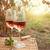 2 · 眼鏡 · ワイン · ブドウ · 表 · フルーツ - ストックフォト © dashapetrenko