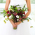 unusual wedding bouquet with succulent flowers at hands of a bri stock photo © dashapetrenko