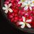 crisantemo · fiore · ciotola · acqua - foto d'archivio © dashapetrenko