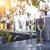 エレガントな · バラ · ピンク · シャンパン · 眼鏡 · 泡 - ストックフォト © dashapetrenko