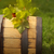 green leaves of the grape on the wine barrel stock photo © dashapetrenko