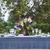 表 · セット · ディナー · 花束 · ピンク - ストックフォト © dashapetrenko