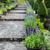 pedra · caminho · jardim · flor · da · primavera · florescimento · flores - foto stock © dashapetrenko