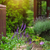 garden with flowers and gazebo stock photo © dashapetrenko