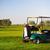 golfe · carro · verão · clube · grama · esportes - foto stock © dashapetrenko