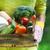kobieta · owoców · szczęśliwy · portret · warzyw · koszyka - zdjęcia stock © dashapetrenko