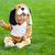 мало · мальчика · собака · костюм · изолированный · белый - Сток-фото © dashapetrenko